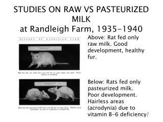STUDIES ON RAW VS PASTEURIZED MILK at Randleigh Farm, 1935-1940