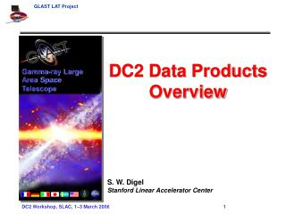 DC2 Data Products Overview S. W. Digel Stanford Linear Accelerator Center