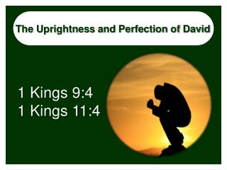 The Uprightness and Perfection of David