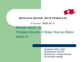 Module ribCO1 3z Draagconstructie in Staal, Hout en Beton Week 07