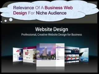 Relevance Of A Business Web Design For Niche Audience