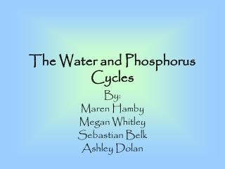 The Water and Phosphorus Cycles
