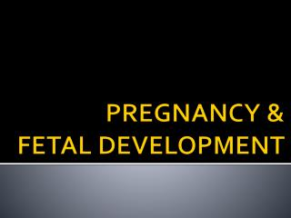 PREGNANCY  &  FETAL DEVELOPMENT