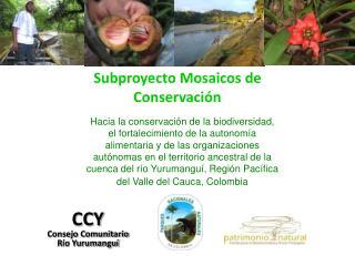 Subproyecto Mosaicos de Conservación