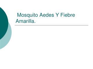 Mosquito Aedes Y Fiebre Amarilla.