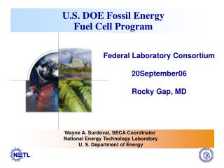 U.S. DOE Fossil Energy   Fuel Cell Program