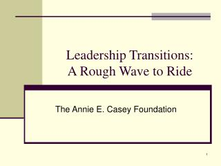 Leadership Transitions: A Rough Wave to Ride