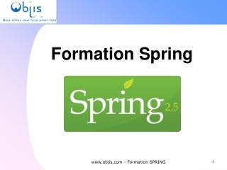 Formation Spring