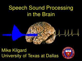 Speech Sound Processing  in the Brain
