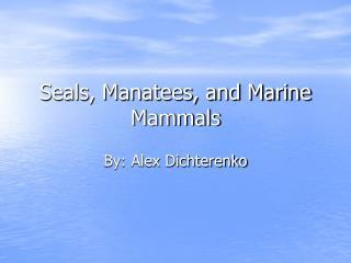 Seals, Manatees, and Marine  Mammals