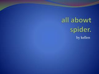 all  abowt  spider.