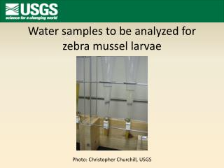 Water samples  to be analyzed for zebra mussel larvae