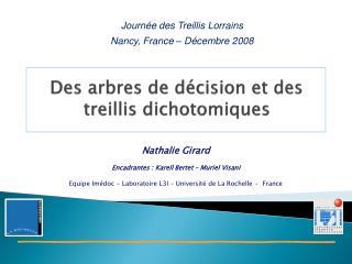 Des arbres de décision et des treillis dichotomiques