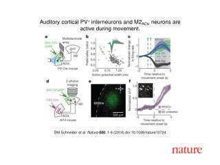 DM Schneider  et al. Nature  000 , 1-6 (2014) doi:10.1038/nature13724