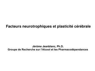 Facteurs neurotrophiques et plasticit� c�r�brale