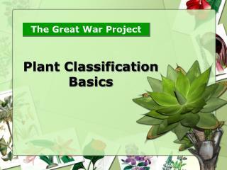 Plant Classification Basics