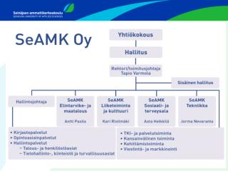 seamk-oy-organisaatio-01082013