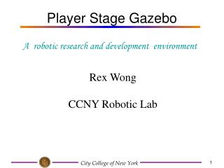 Player Stage Gazebo