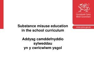 Welsh Government substance  misuse guidance circular