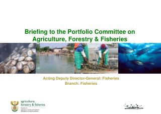 Briefing to the Portfolio Committee on Agriculture, Forestry & Fisheries