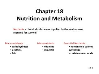 Chapter 18 Nutrition and Metabolism