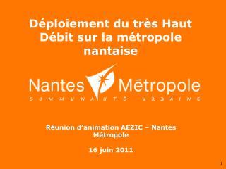Réunion d'animation AEZIC – Nantes Métropole 16 juin 2011