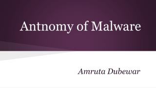 Antnomy of Malware