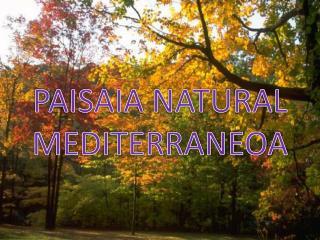 PAISAIA NATURAL MEDITERRANEOA