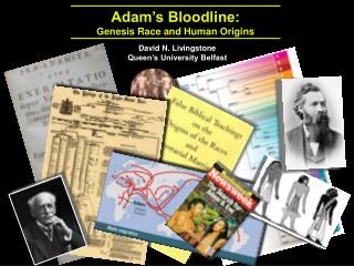 Adam's Bloodline:  Genesis Race and Human Origins
