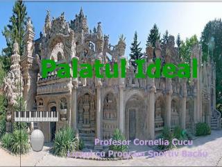 Palatul Ideal Profesor Cornelia Cucu                       Liceul cu Program Sportiv Bacău