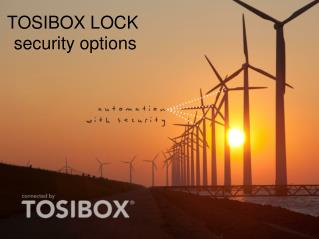 TOSIBOX LOCK  security options