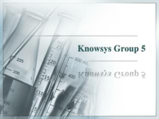 Knowsys Group 5
