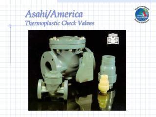 Asahi/America Thermoplastic Check Valves