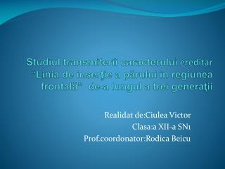 Realidat de:Ciulea Victor                      Clasa:a XII-a SN1 Prof.coordonator:Rodica Beicu