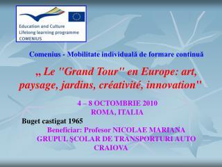Comenius -  Mobilitate individuală de formare continuă
