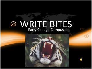 WRITE BITES