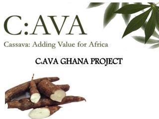 C:AVA GHANA PROJECT