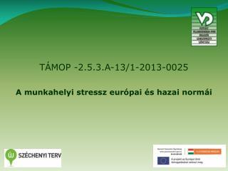 TÁMOP -2.5.3.A-13/1-2013-0025 A munkahelyi stressz európai és hazai normái