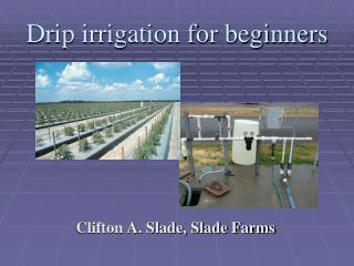 Drip irrigation for beginners