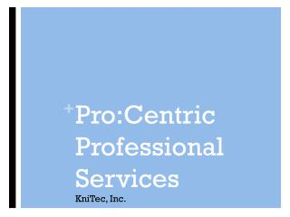 Pro:Centric Professional Services