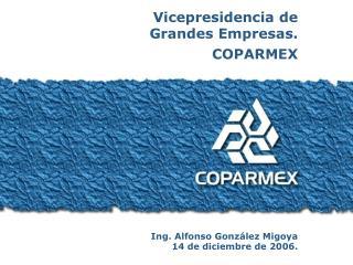 Vicepresidencia de  Grandes Empresas. COPARMEX