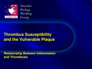 Thrombus Susceptibility and the Vulnerable Plaque