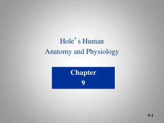 Hole ' s Human Anatomy and Physiology