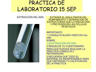 PRÁCTICA DE LABORATORIO 15 SEP