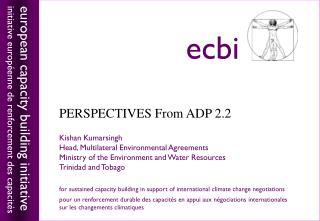 PERSPECTIVES From ADP 2.2 priorities for  warsaw  priorities for  warsaw Kishan Kumarsingh