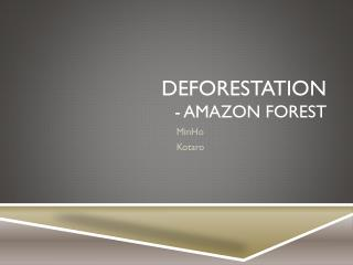 Deforestation - Amazon Forest