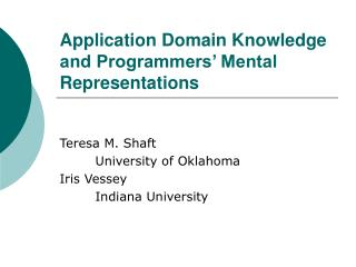 Application Domain Knowledge and Programmers' Mental Representations