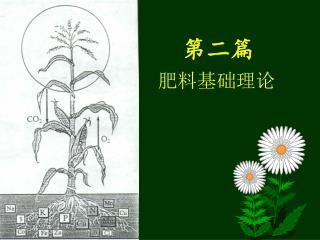 第二篇   肥料基础理论
