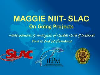 MAGGIE NIIT- SLAC On Going Projects