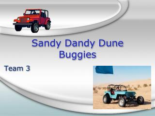 Sandy Dandy Dune Buggies